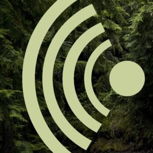 SuttaReadings.net logo
